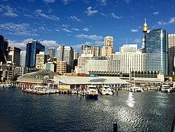 悉尼海洋生物水族馆