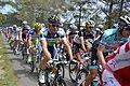 TDF2012 13e étape peloton 08.JPG