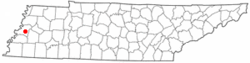 Location of Ripley, Tennessee