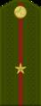 Tajikistan-Army-OF-1a.png
