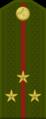 Tajikistan-Army-OF-1c.png