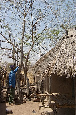 Huis in Tambacounda