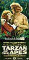 Tarzan of the Apes 1918.JPG
