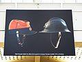 Temporary exhibition about WWI, gare de Paris-Est, 2014 (French kepi & Adrian helmet).jpg