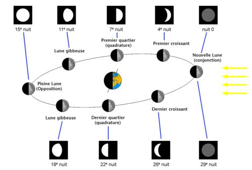 orbita de la luna y fases vistas desde el hemisferio norte de la ...