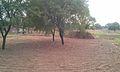 Thathi Mughlan Back - panoramio.jpg