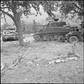 The British Army in the Normandy Campaign 1944 B6218.jpg