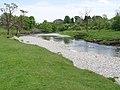 The River Wharfe approaches Gaistrill's Strid - geograph.org.uk - 824401.jpg