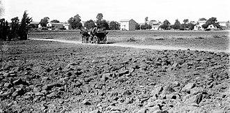Sarona (colony) - Sarona, early 1900s