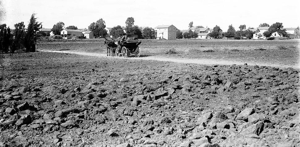 The Sarona Templer Settlement taken between 1898 and 1946