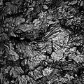 The ductile fracture surface of low-carbon steel.jpg
