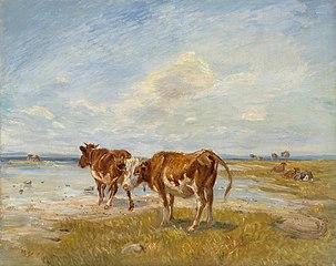 Lehmiä rannalla, luonnos