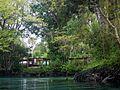 Three Sisters Springs, Crystal River - panoramio.jpg