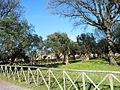 Tivoli- Hadrianus császár - 'Villa Adriana' romkertje27.JPG