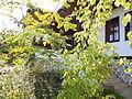 Tonche Kadinmostki house.Kyustendil.3.jpg