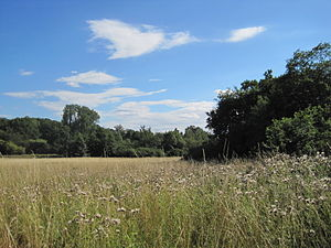 Totteridge Fields - Image: Totteridge Fields