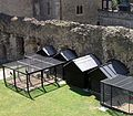 Tower of London -cages for ravens-8a-5Aug2004.jpg