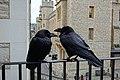 Tower of London 5.jpg