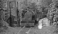 Towyn - Abergynolwyn train at Dolgoch, 1952 (geograph 5209260).jpg