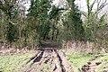 Track into Berrow Wood - geograph.org.uk - 710014.jpg