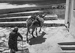 Traditional transport, Apeiranthos, Naxos, Aper04.jpg