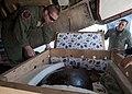 Transporting a sea turtle 120821-N-HW704-018.jpg