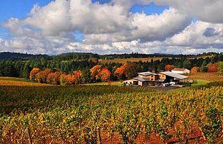 Trisaetum Winery