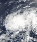 Tropical Depression Ten shortly after formation on August 13