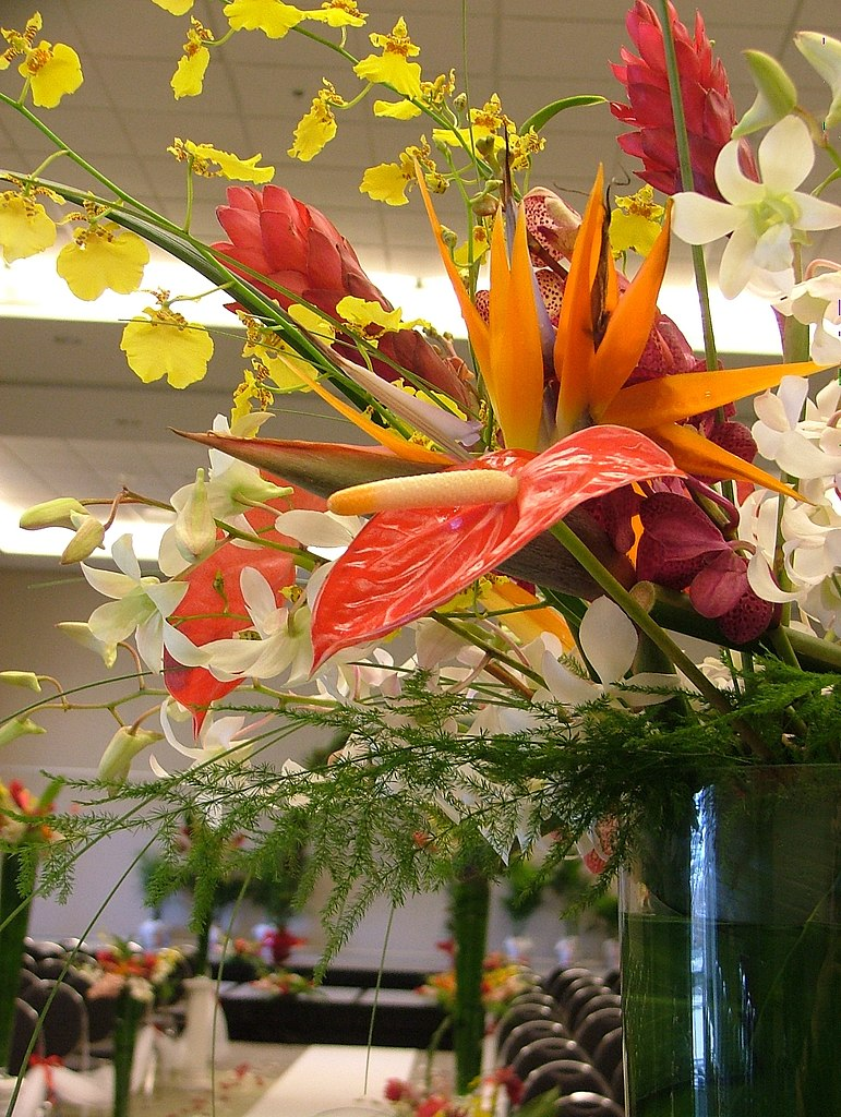 Filetropical Flower Arrangement Weddingg Wikimedia Commons