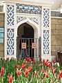 Tulipa Fata Morgana.jpg