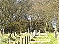Tumulus at High Bradfield - geograph.org.uk - 342292.jpg