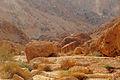 Tze'elim Canyon 16397 (11852494376).jpg