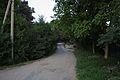 UPPER St. NEVSKOGO (2012-06-24 21-12-22) - panoramio.jpg