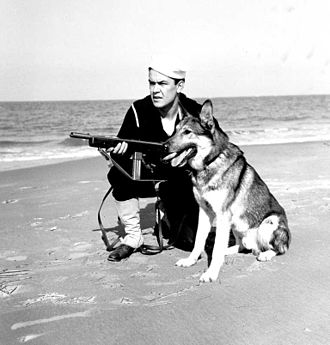 M50 Reising - A U.S. Coast Guard sailor on shore patrol with working dog and a Reising Model 50 with 12-round magazine.