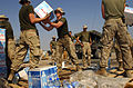 US Navy 031015-N-6932B-006 Marines from the 13th Marine Expeditionary Unit (MEU) load trucks with cases of water in preparation for humanitarian assistance operations in the Al Faw peninsula of Iraq during Operation Sweeney.jpg