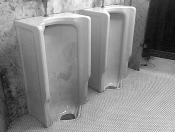There is something sepulchral about the urinal...