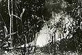 Us-flamethrowers-RG-208-AA-158-L-002.jpg