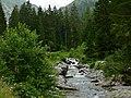 Vésubie River (35320607720).jpg