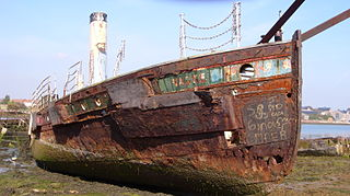 <i>Vadne</i> (ferry)