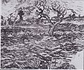 Van Gogh - Landschaft mit Olivenbaum und Bergkette im Hintergrund.jpeg