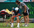 Verdasco injured (8561318368).jpg