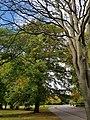 Victoria Park 20170930 153244 (49768081861).jpg