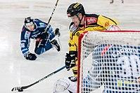 Vienna Capitals vs Fehervar AV19 -65.jpg