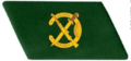 Vietnam Border Defense Force rank lapel.png