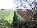 View NE from Speechley's Drove, Borough Fen, Peterborough - geograph.org.uk - 132938.jpg