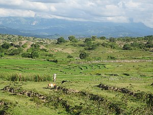 Baucau - Image: View over ricefields towards Seical, with Mt Matebian in background 13 Apr 2013