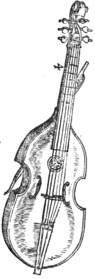 Viola bastarda - Image: Viola bastarda