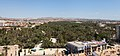 Vista del Palmeral desde la torre de la Basílica de Santa María, España, 2014-07-05, DD 12.JPG