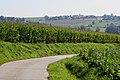 Vlaamse Ardennen 23.jpg