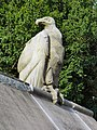 Vulture, Cardiff Animal Wall.jpg